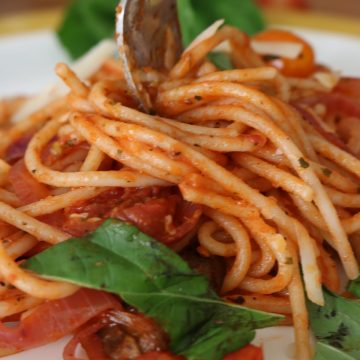 Fork with Spaghetti with fire roasted crushed tomato sauce